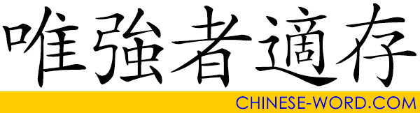 Chinese idiom: 唯強者適存, Only the Strong Survives.